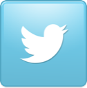 1395243088 bird twitter new square